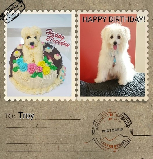 My 'first try' in making my troy's Birthday's cake as similar to his whole appearance?