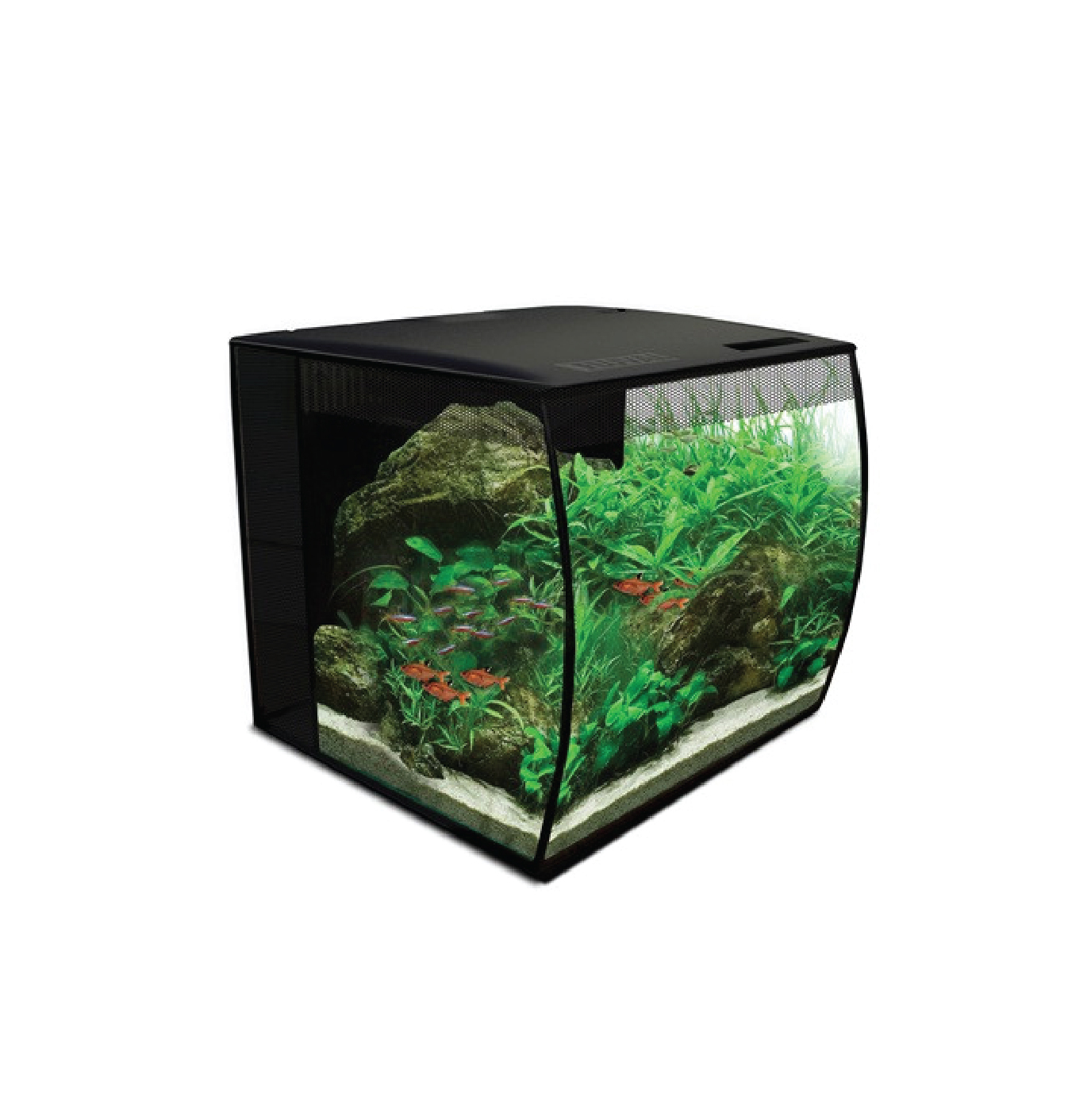 Aquariums/Tanks