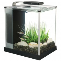 Fluval Spec Aquarium Set Black - 10 L (2.6 US gal) NEW