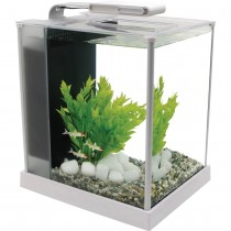 Fluval Spec Aquarium Set White - 10 L (2.6 US gal) NEW