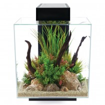 Fluval Edge 2.0 Aquarium Set Black - 46 L (12 US gal)