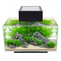 Fluval Edge 2.0 Aquarium Set Black - 23 L (6 US gal)