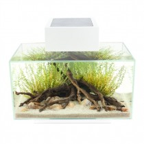 Fluval Edge 2.0 Aquarium Set White - 23 L (6 US gal)