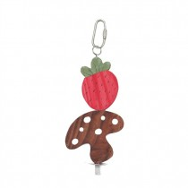 Living World Nibblers Wood Chews - Strawberry & Mushroom on Stick