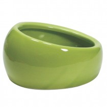 Living World Ergonomic Dish Large 420ml - Available in Green, Blue & Terracotta