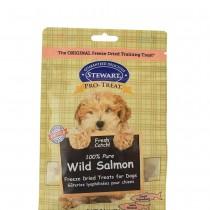 Stewart Pro-Treat® Freeze Dried Wild Salmon Pouch - 8 oz