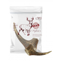 Absolute Bites Whole Deer Antlers - Available in Mini, Medium, Maxi & Giant