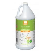 Nootie Shampoo Aloe & Oatmeal Cucumber Melon' - 1 Gallon