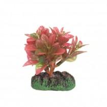 Nisso Aquatic Plants SS-2