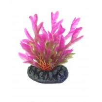 Nisso Aquatic Plants S-4