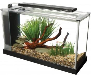 Fluval Spec Aquarium Set Black - 19 L (5 US gal) NEW