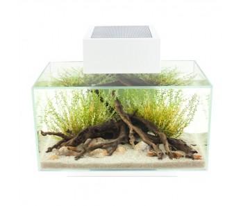 Fluval Edge Aquarium Set - White - 23 L (6 US gal)
