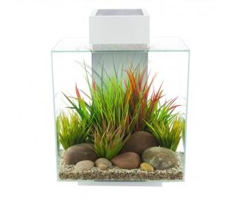 Fluval Edge Aquarium Set - White - 46 L (12 US gal)