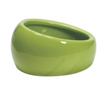 Living World Ergonomic Dish Small 120ml - Available in Green, Blue & Terracotta