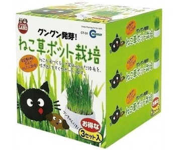 Marukan Cat Grass Pot 3pcs/set [CT31]