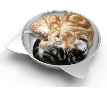 Marukan Cat Cooling Pot Jumbo [CT418]