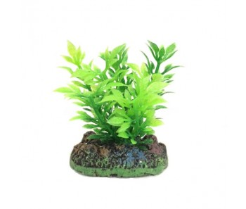 Nisso Aquatic Plants SS-4