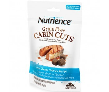 Nutrience Grain Free Cabin Cuts Maple Glazed Salmon Dog Treats 170g