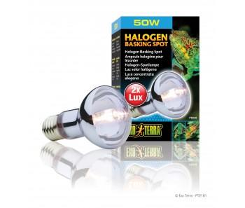 EXO TERRA Sun Glo Daylight Halogen Lamp 50W/ 75W/ 100W/ 150W