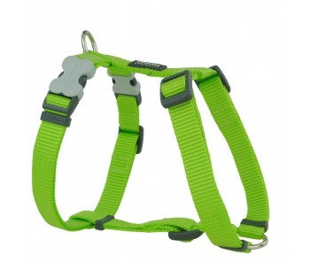 Red Dingo Dog Harness Classic - Lime Green - Available In S, M, ML & L